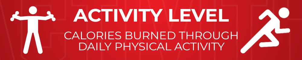 Activity Level - calories burned through daily physical activity
